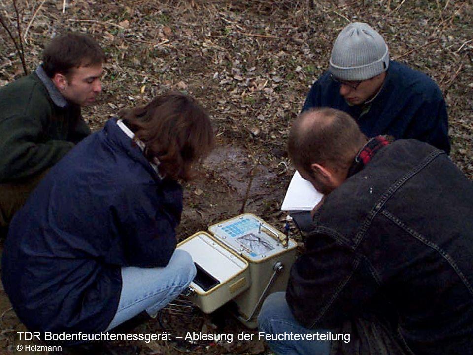 TDR Bodenfeuchtemessgerät – Ablesung der Feuchteverteilung © Holzmann