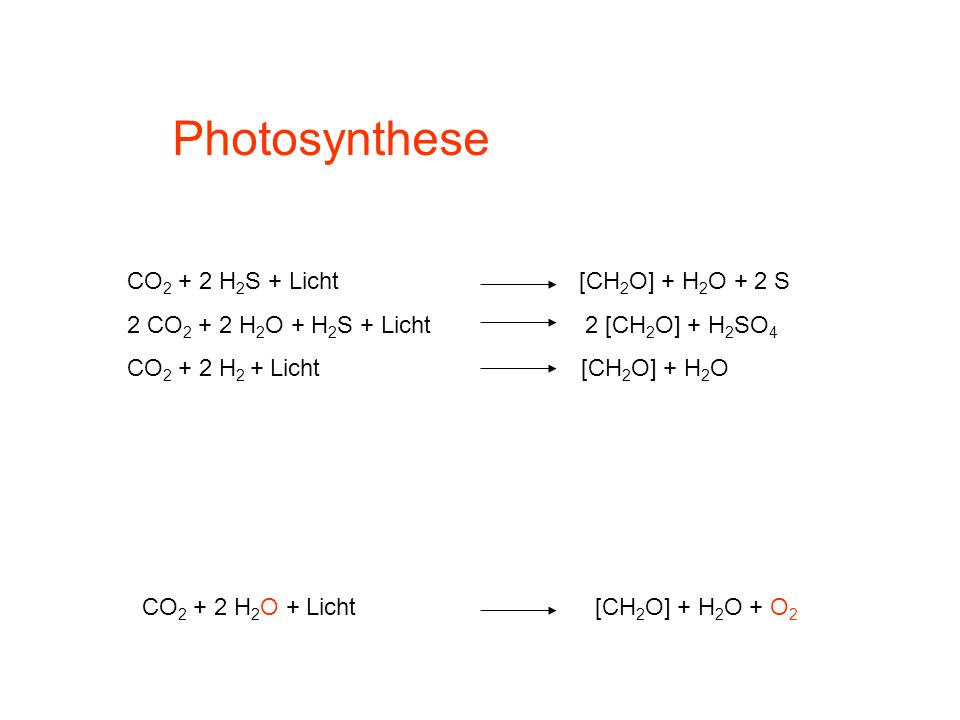Photosynthese CO2 + 2 H2S + Licht [CH2O] + H2O + 2 S