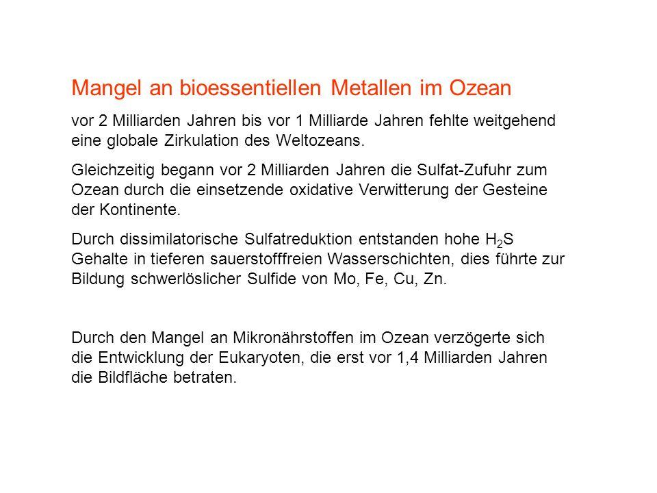 Mangel an bioessentiellen Metallen im Ozean