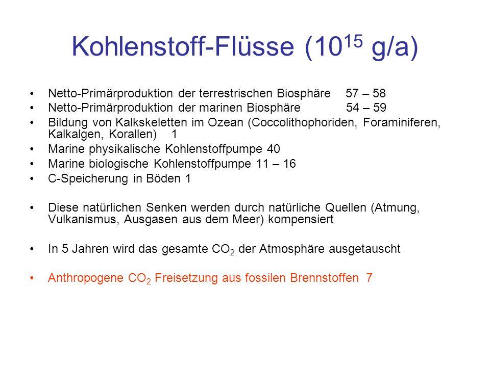 Kohlenstoff-Flüsse (1015 g/a)
