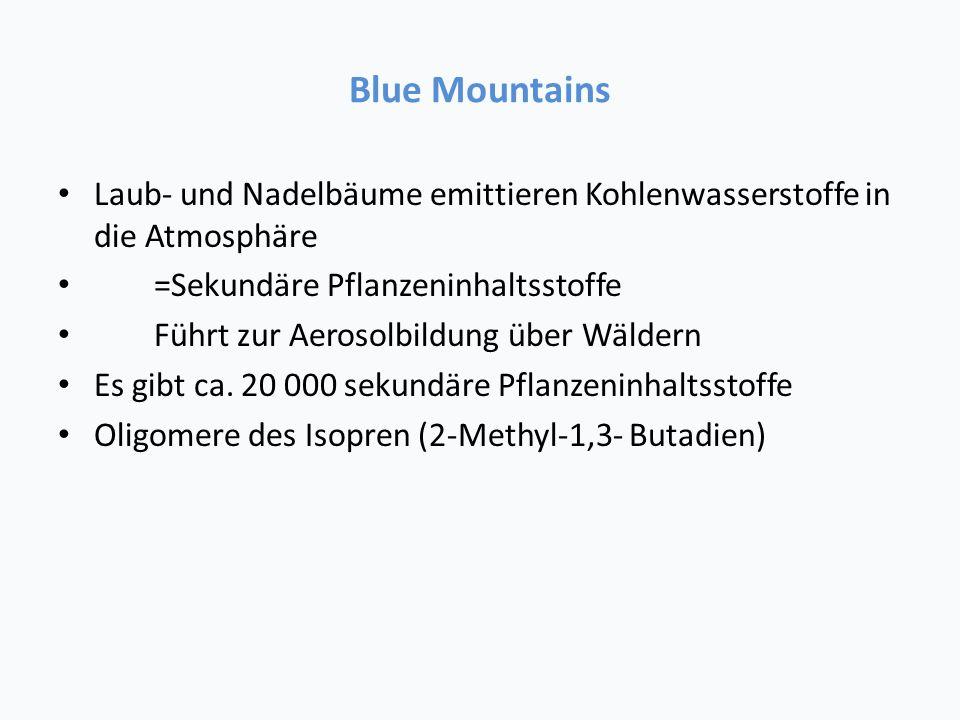 Blue Mountains Laub- und Nadelbäume emittieren Kohlenwasserstoffe in die Atmosphäre. =Sekundäre Pflanzeninhaltsstoffe.