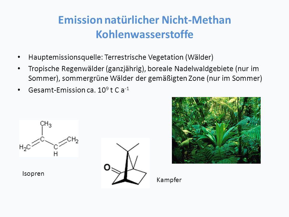 Emission natürlicher Nicht-Methan Kohlenwasserstoffe
