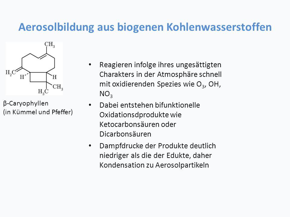 Aerosolbildung aus biogenen Kohlenwasserstoffen