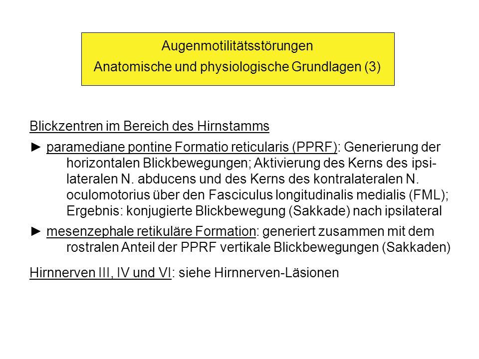 Augenmotilitätsstörungen Anatomische und physiologische Grundlagen (3)