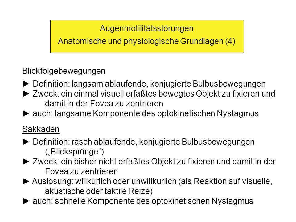 Beste Dreh Definition Anatomie Bilder - Anatomie Ideen - finotti.info