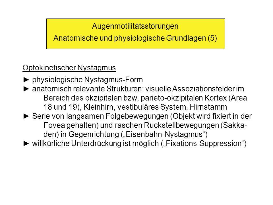 Augenmotilitätsstörungen Anatomische und physiologische Grundlagen (5)