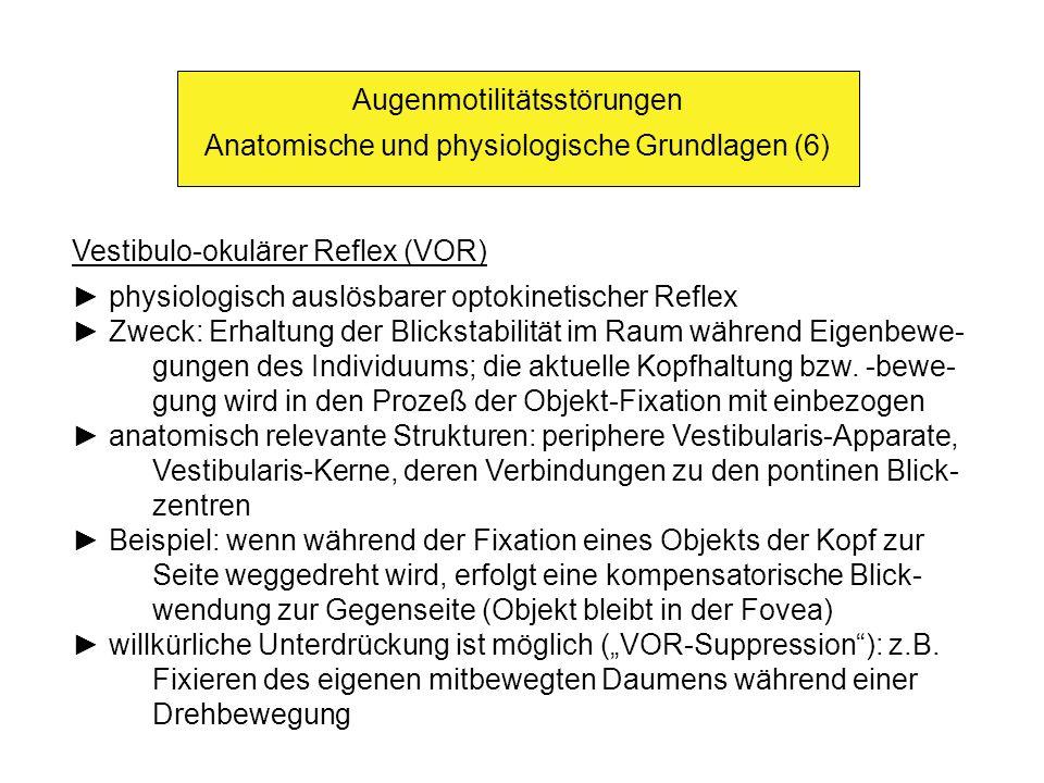Augenmotilitätsstörungen Anatomische und physiologische Grundlagen (6)