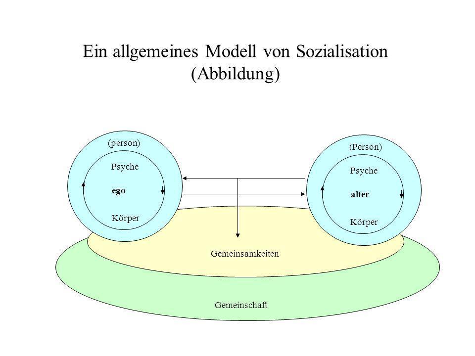 Ein allgemeines Modell von Sozialisation (Abbildung)