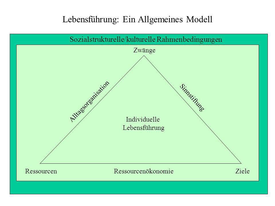 Lebensführung: Ein Allgemeines Modell