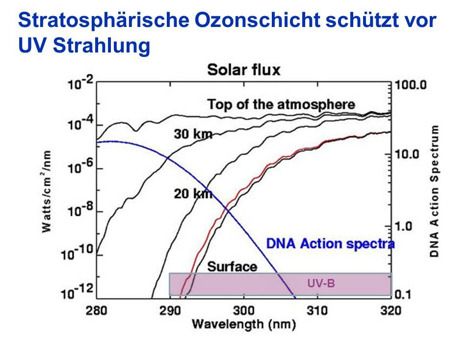 Stratosphärische Ozonschicht schützt vor UV Strahlung