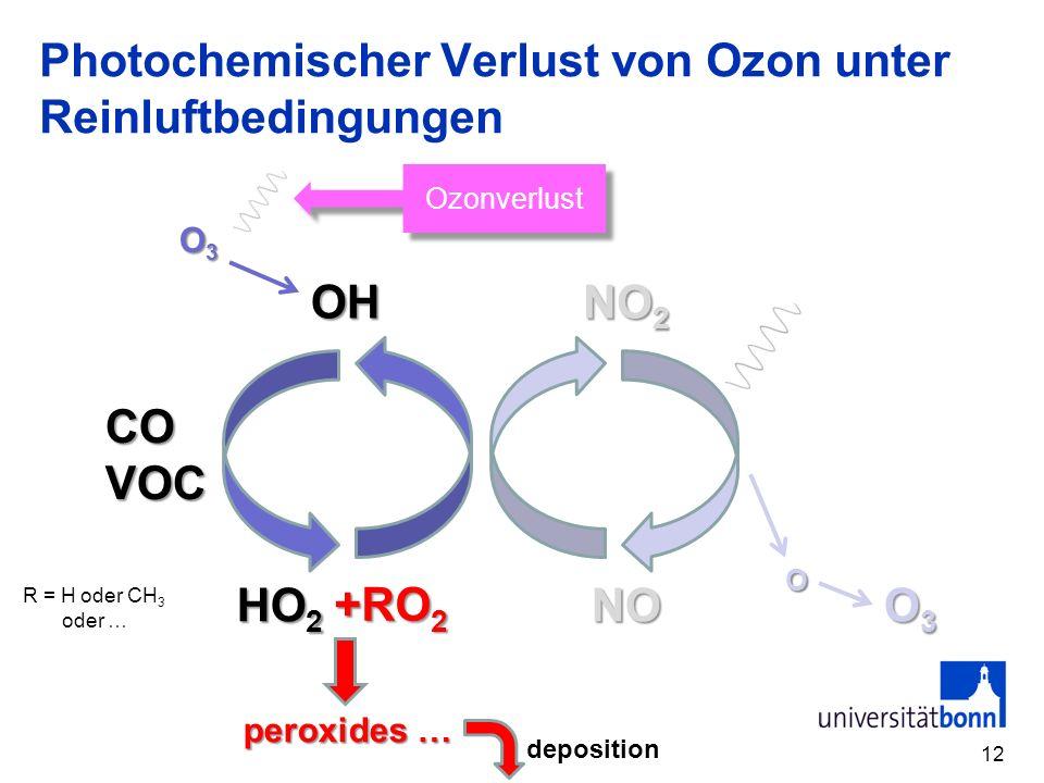 Photochemischer Verlust von Ozon unter Reinluftbedingungen
