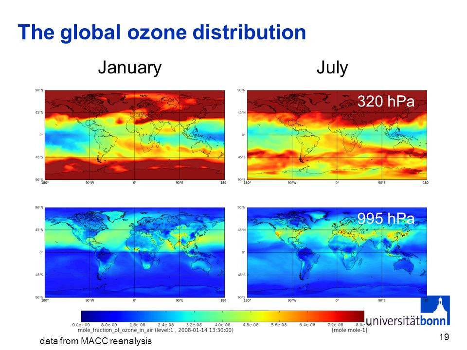 The global ozone distribution