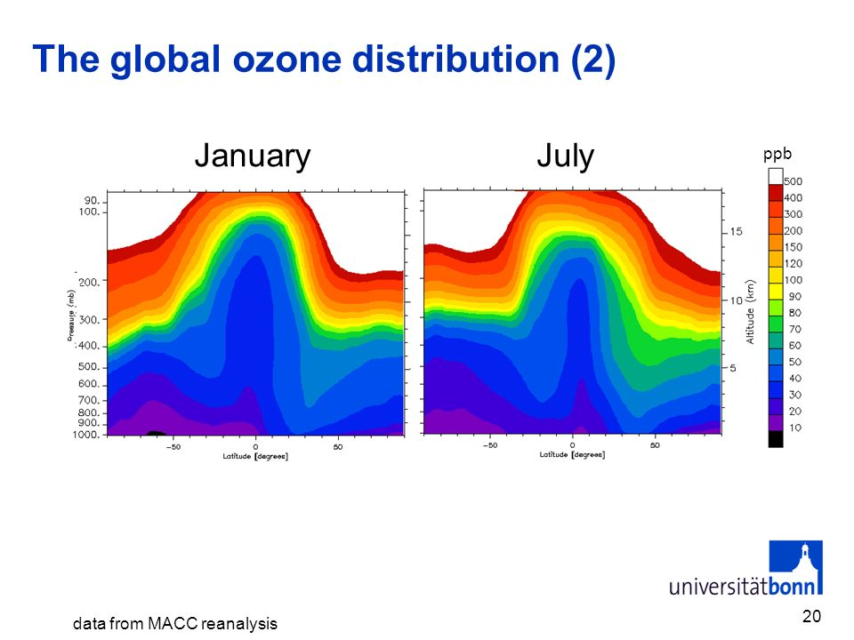 The global ozone distribution (2)