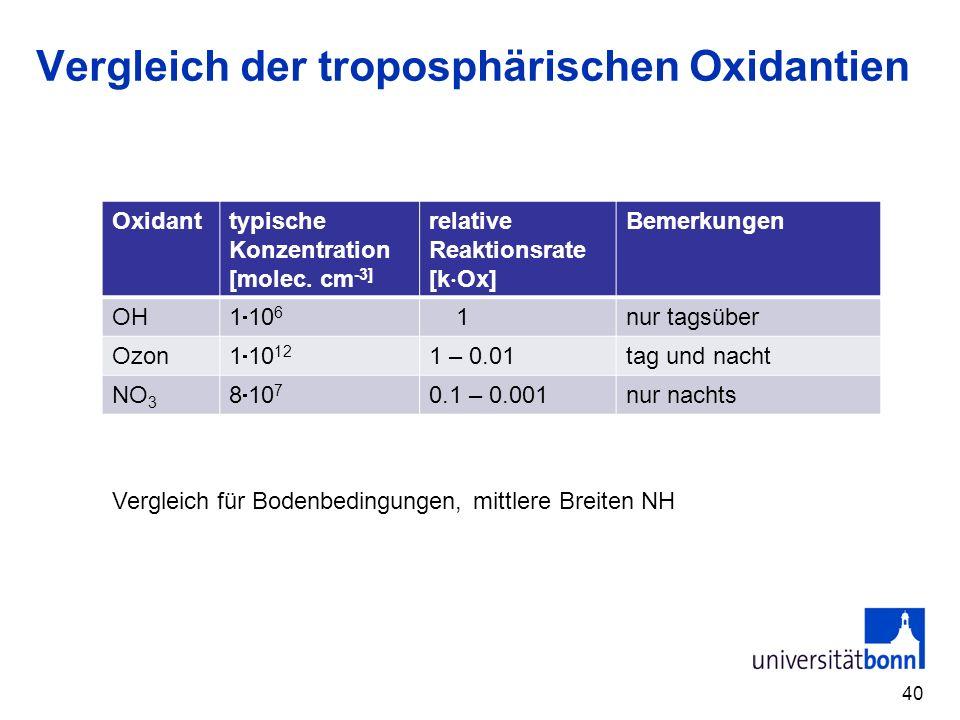 Vergleich der troposphärischen Oxidantien