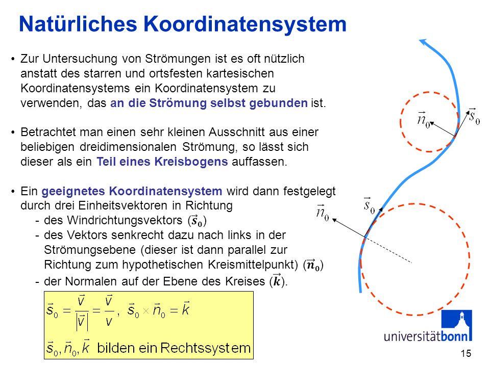 Natürliches Koordinatensystem