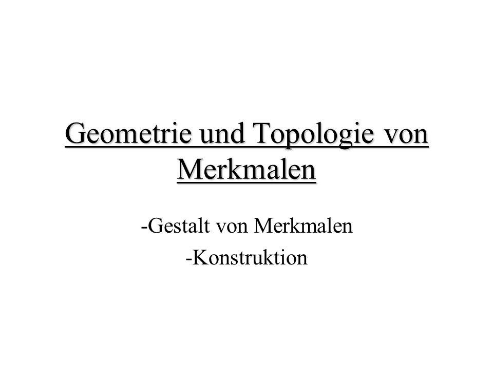 Geometrie und Topologie von Merkmalen