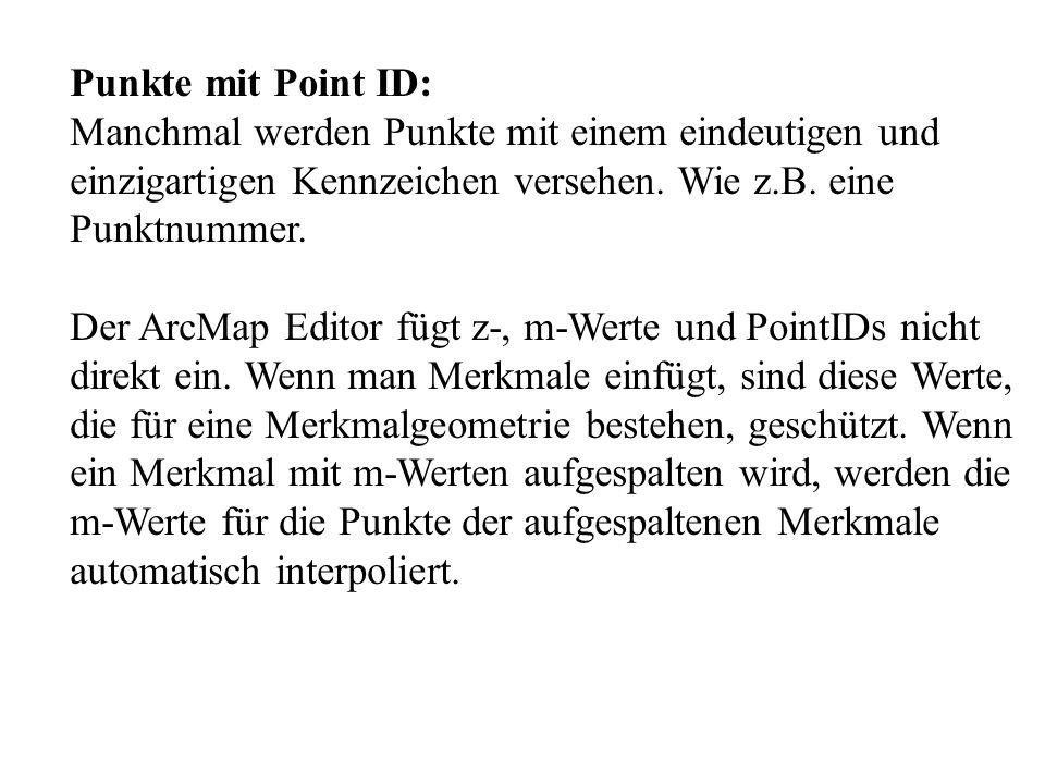 Punkte mit Point ID: Manchmal werden Punkte mit einem eindeutigen und. einzigartigen Kennzeichen versehen. Wie z.B. eine.