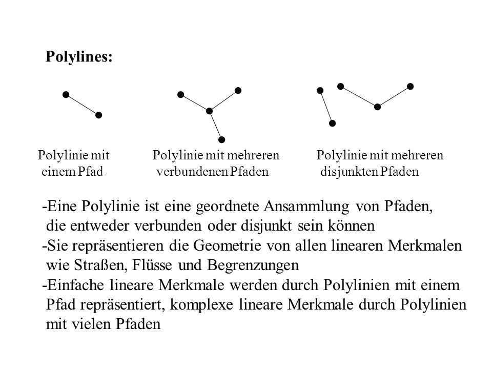 -Eine Polylinie ist eine geordnete Ansammlung von Pfaden,