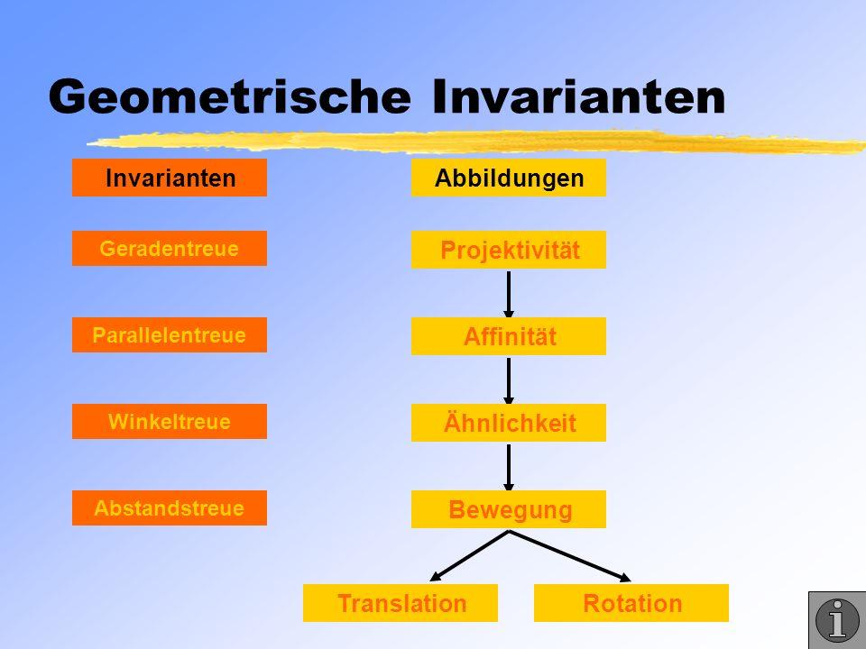 Geometrische Invarianten