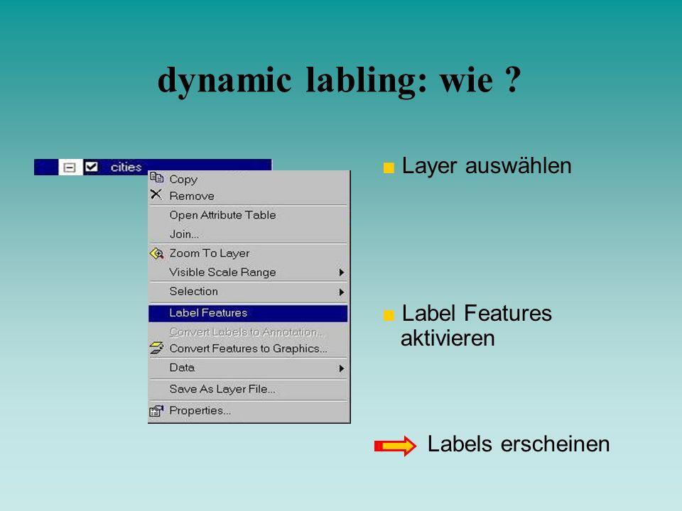 dynamic labling: wie Layer auswählen Label Features aktivieren