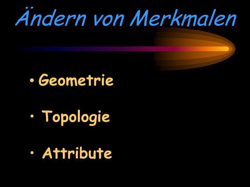 Ändern von Merkmalen Geometrie Topologie Attribute