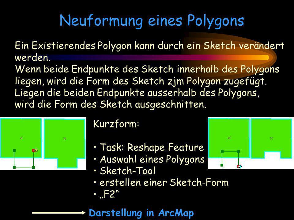 Neuformung eines Polygons
