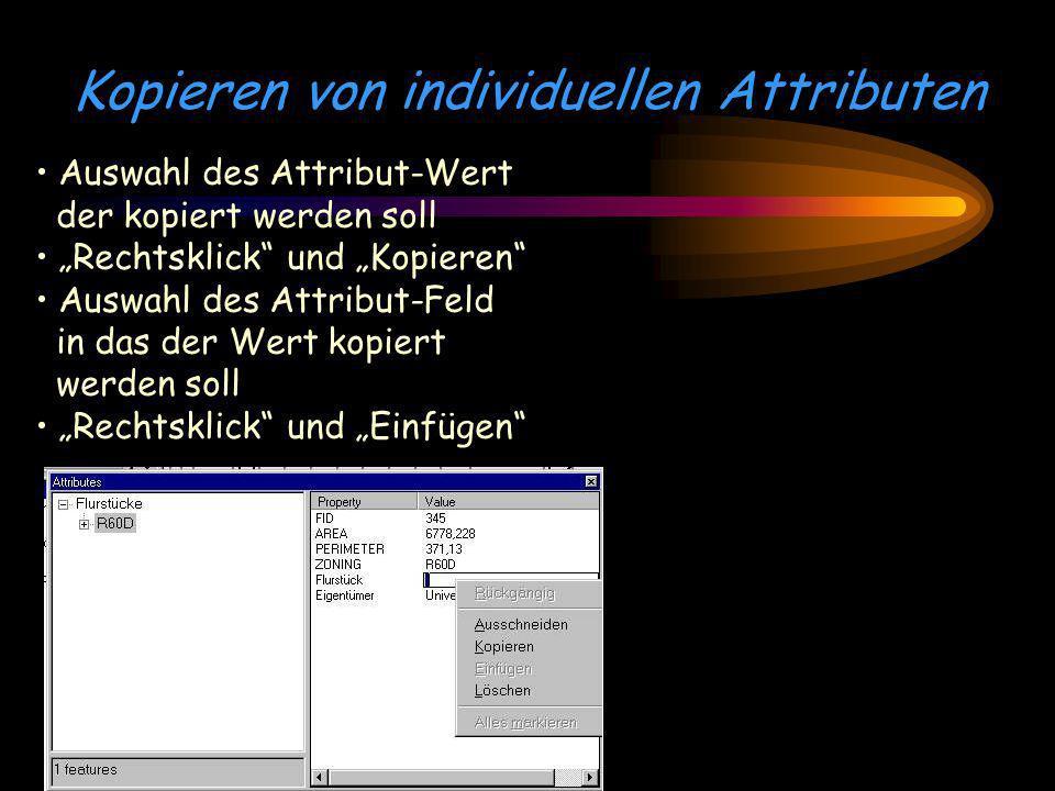 Kopieren von individuellen Attributen