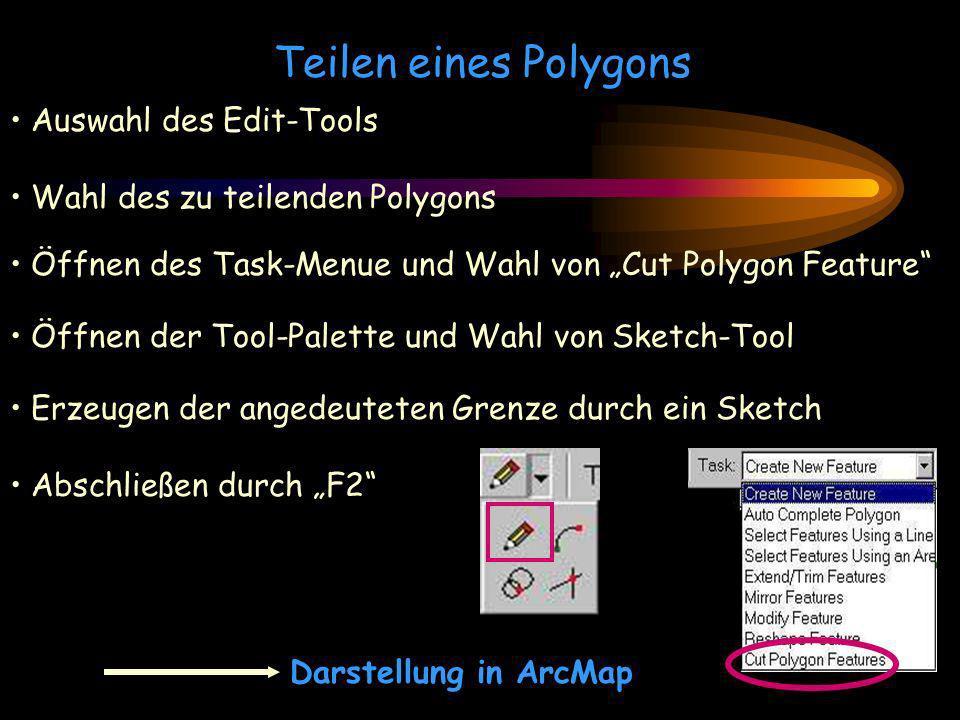 Teilen eines Polygons Auswahl des Edit-Tools