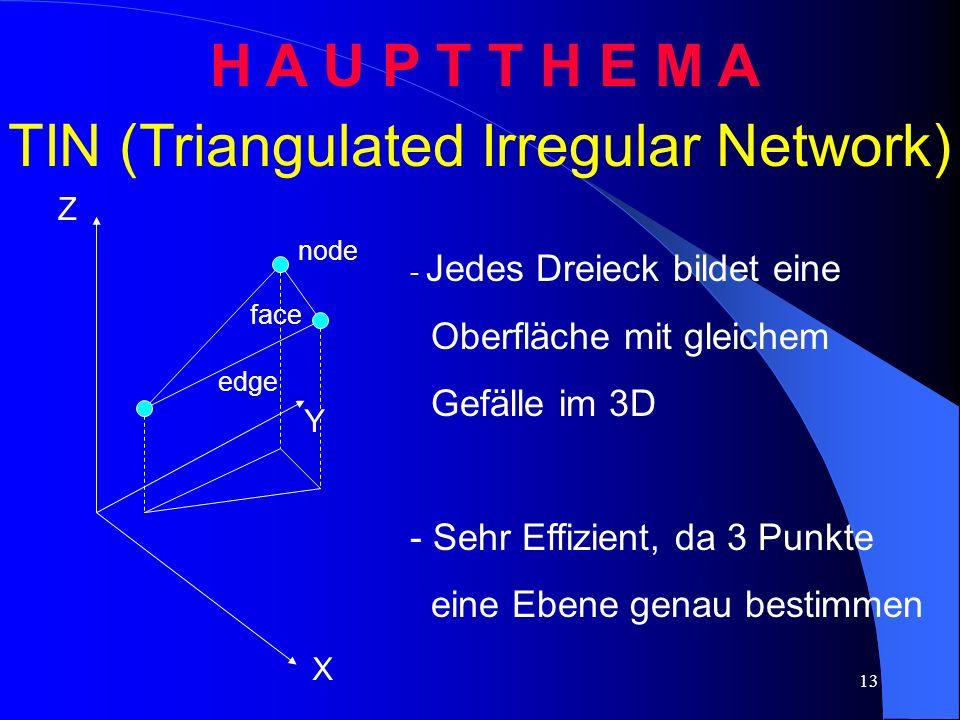 TIN (Triangulated Irregular Network)
