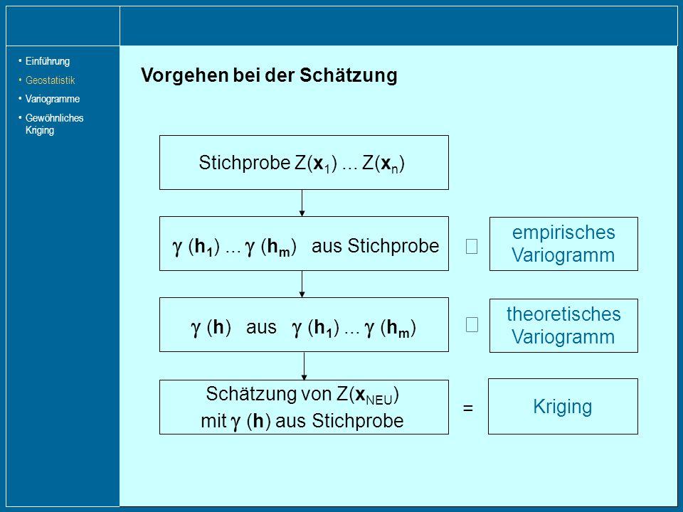 Þ g (h) aus g (h1) ... g (hm) Þ Vorgehen bei der Schätzung