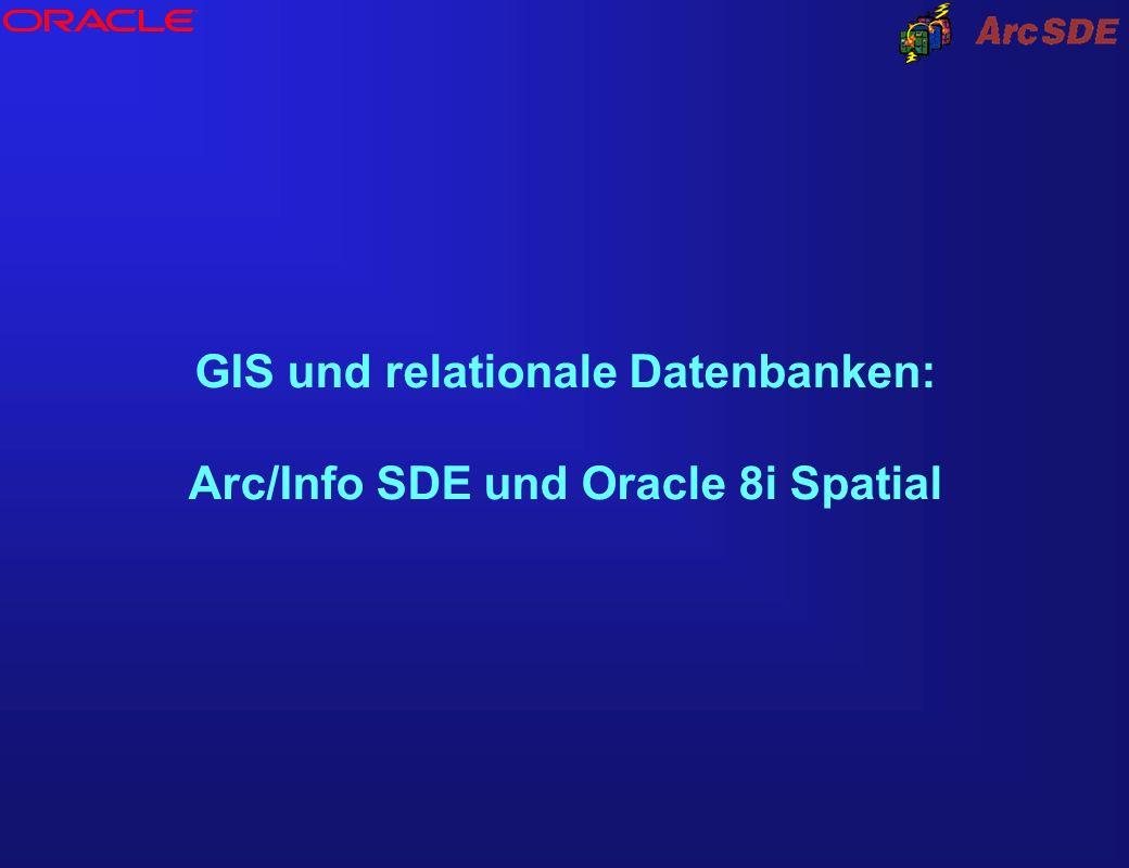 GIS und relationale Datenbanken: Arc/Info SDE und Oracle 8i Spatial