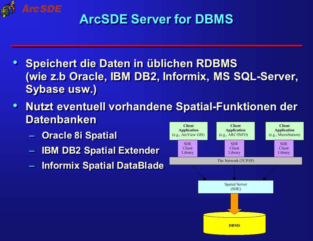 ArcSDE Server for DBMS Speichert die Daten in üblichen RDBMS (wie z.b Oracle, IBM DB2, Informix, MS SQL-Server, Sybase usw.)