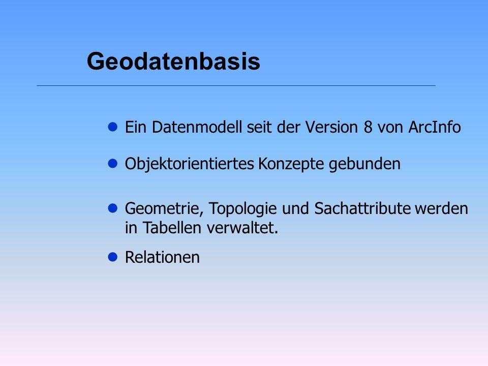 Geodatenbasis Ein Datenmodell seit der Version 8 von ArcInfo