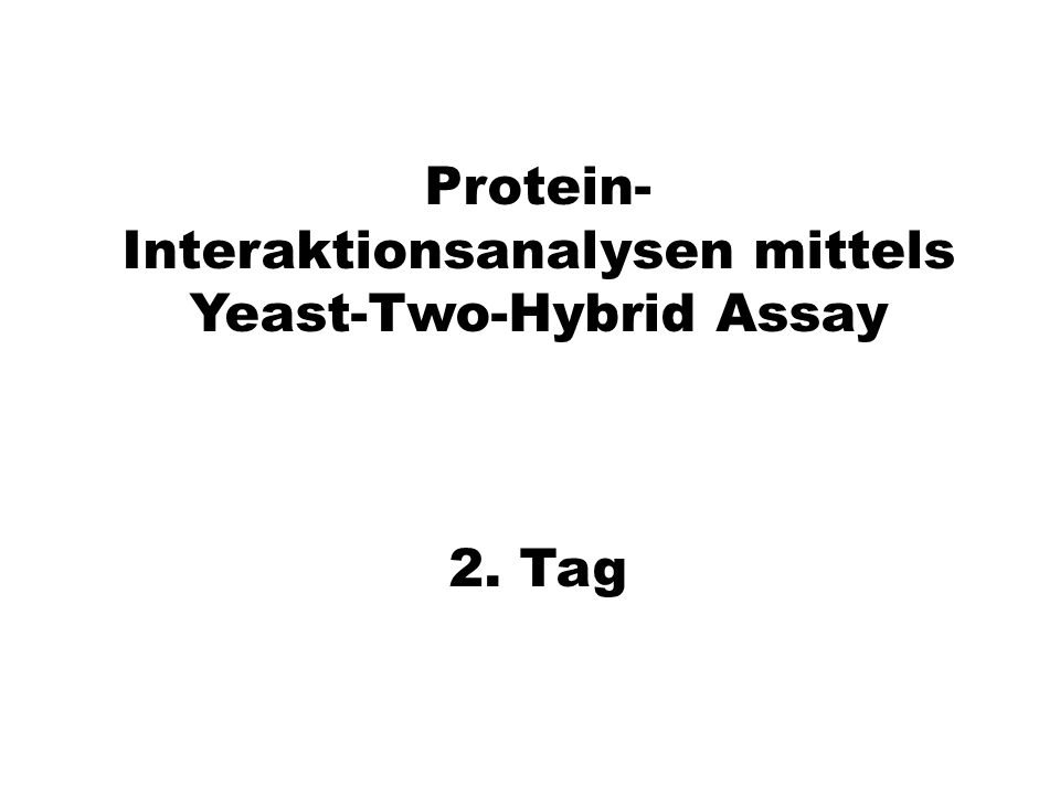 Protein-Interaktionsanalysen mittels Yeast-Two-Hybrid Assay