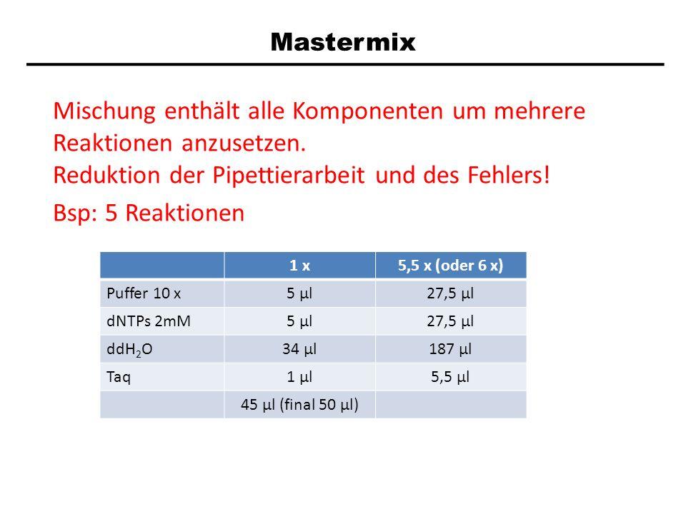 Mastermix Mischung enthält alle Komponenten um mehrere Reaktionen anzusetzen. Reduktion der Pipettierarbeit und des Fehlers!