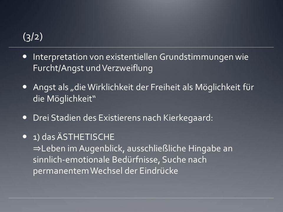 (3/2)Interpretation von existentiellen Grundstimmungen wie Furcht/Angst und Verzweiflung.