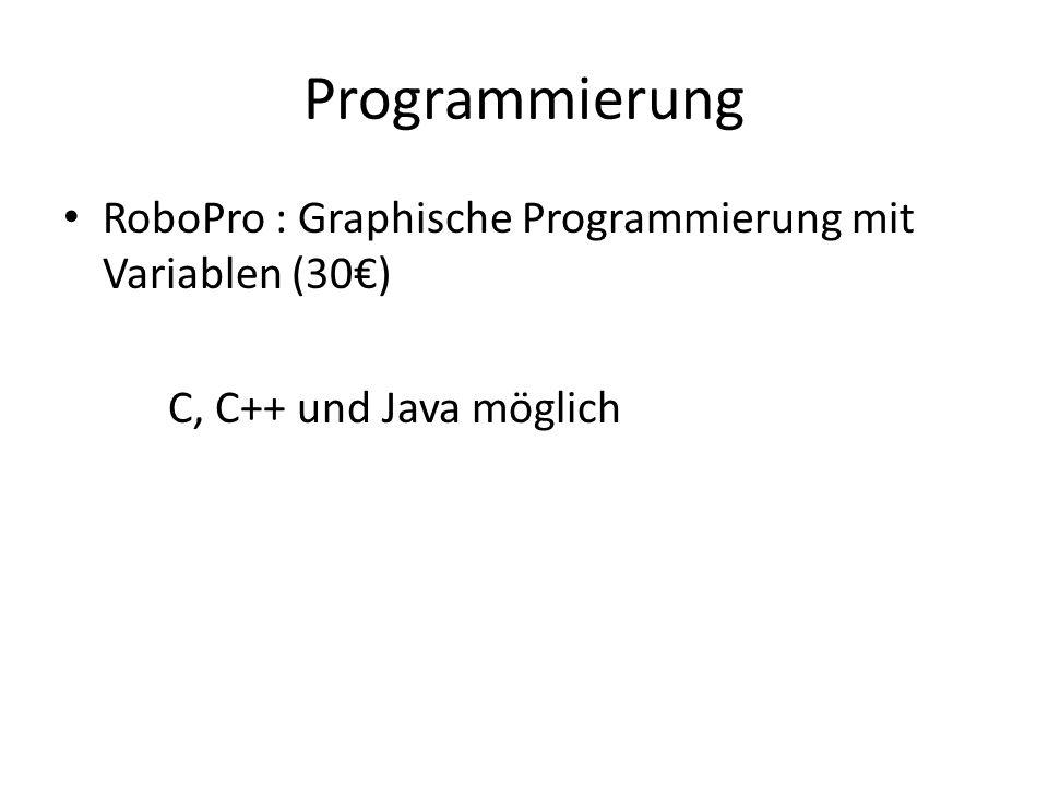 Programmierung RoboPro : Graphische Programmierung mit Variablen (30€)