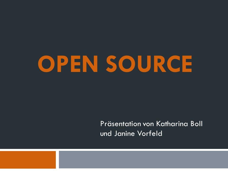 Präsentation von Katharina Boll und Janine Vorfeld