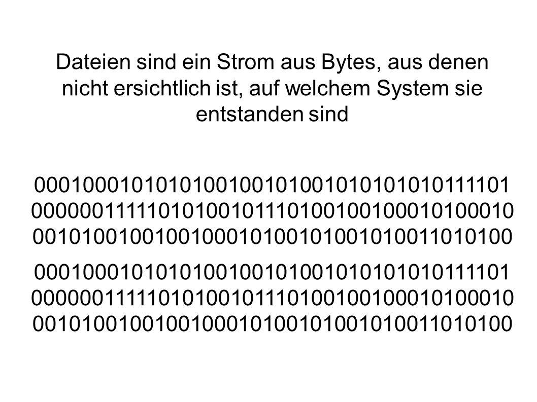 Dateien sind ein Strom aus Bytes, aus denen nicht ersichtlich ist, auf welchem System sie entstanden sind