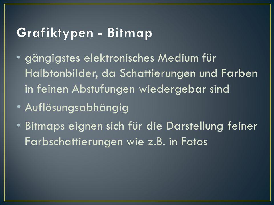 Grafiktypen - Bitmap gängigstes elektronisches Medium für Halbtonbilder, da Schattierungen und Farben in feinen Abstufungen wiedergebar sind.