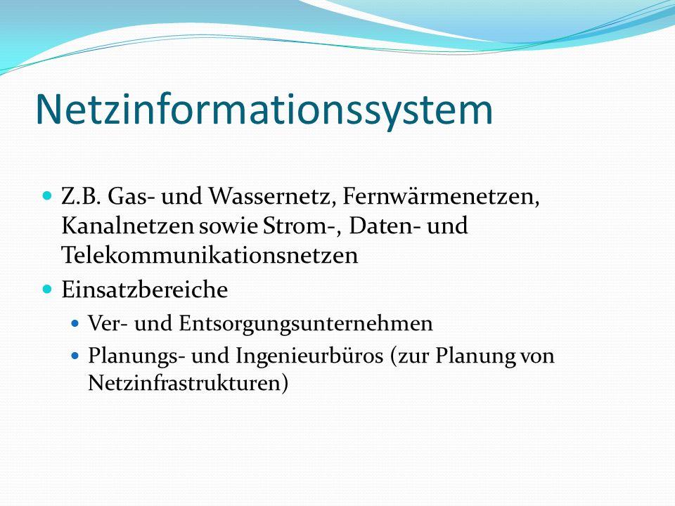 Netzinformationssystem