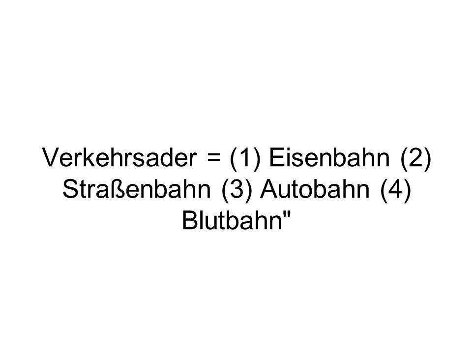 Verkehrsader = (1) Eisenbahn (2) Straßenbahn (3) Autobahn (4) Blutbahn