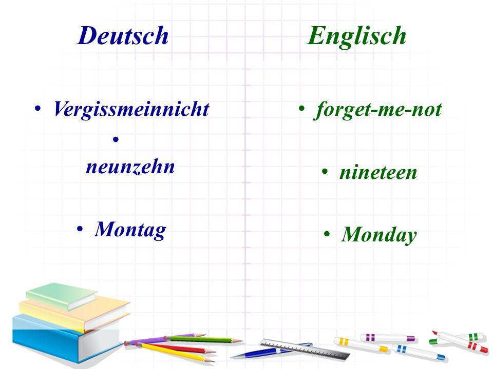 Deutsch Englisch Vergissmeinnicht neunzehn Montag forget-me-not