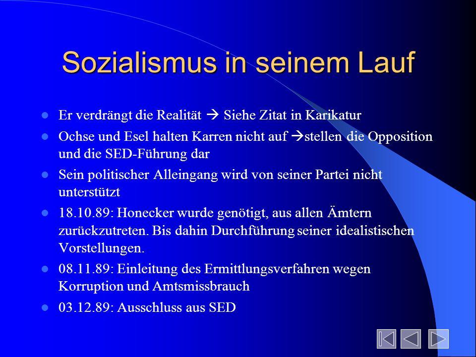 Sozialismus in seinem Lauf