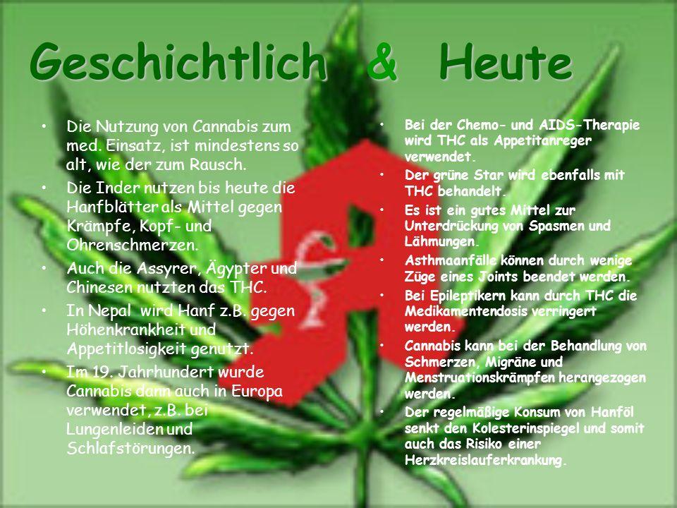 Geschichtlich & Heute Die Nutzung von Cannabis zum med. Einsatz, ist mindestens so alt, wie der zum Rausch.