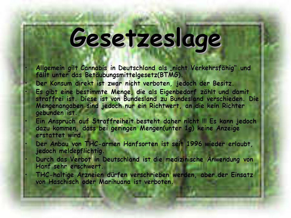 """Gesetzeslage Allgemein gilt Cannabis in Deutschland als """"nicht Verkehrsfähig und fällt unter das Betäubungsmittelgesetz(BTMG)."""
