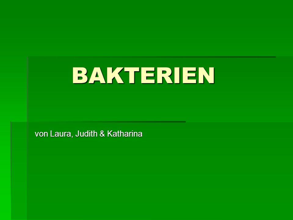 von Laura, Judith & Katharina