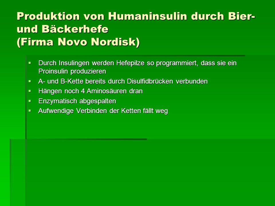 Produktion von Humaninsulin durch Bier- und Bäckerhefe (Firma Novo Nordisk)
