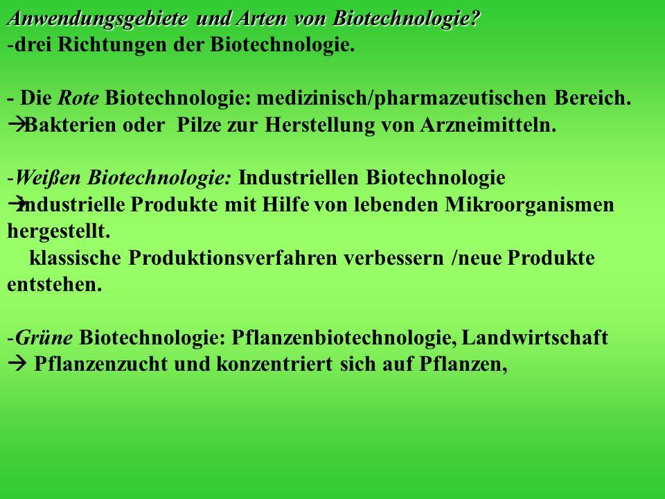 Anwendungsgebiete und Arten von Biotechnologie