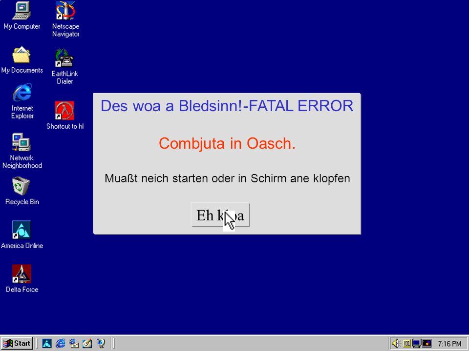Des woa a Bledsinn!-FATAL ERROR Combjuta in Oasch.